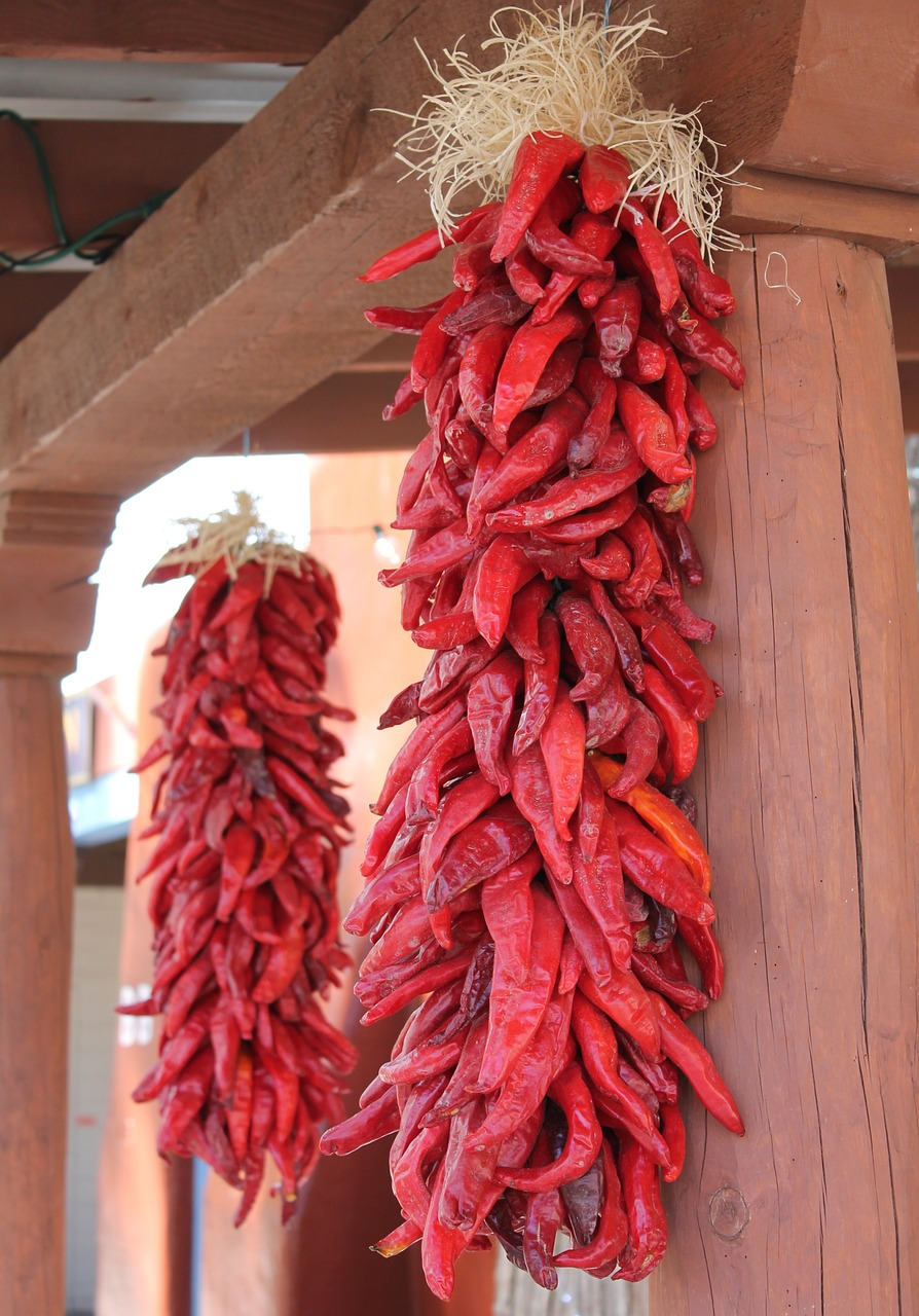 Red chiles hanging from a post.